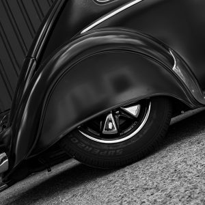 beetle-rear