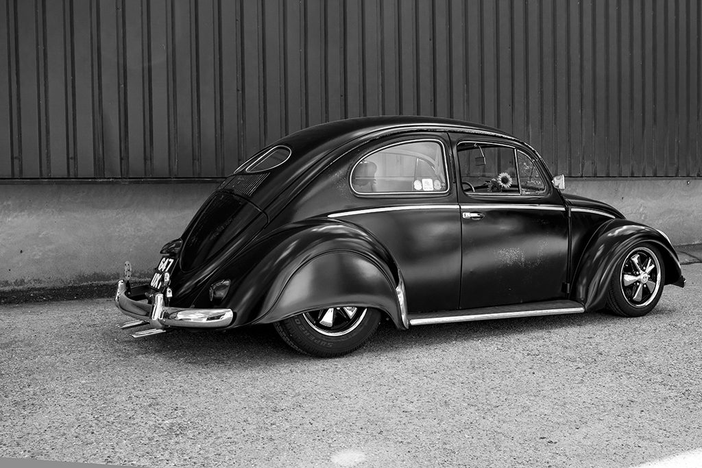 beetle-side